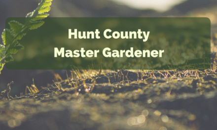 It's time to plan for Asparagus || Hunt County Master Gardener
