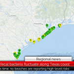 Varying levels of fecal bacteria at Texas beaches – Keep an eye on this website