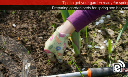 Preparing garden beds for spring and beyond || Tips and tricks