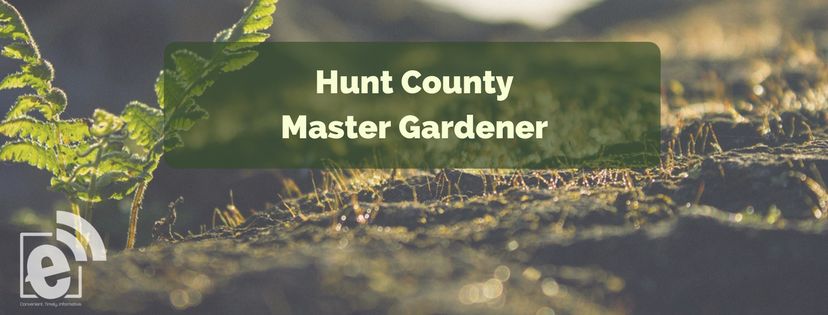 The largest plant in your garden || Hunt County Master Gardener