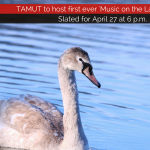 TAMUT to host first ever 'Music on the Lake' Festival on April 27