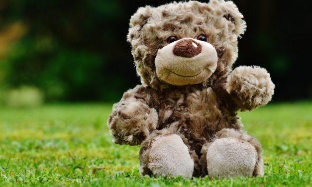 Teddy Bear Clinic at Jo's Downtown