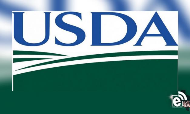 USDA designates 37 Texas counties as primary natural disaster areas